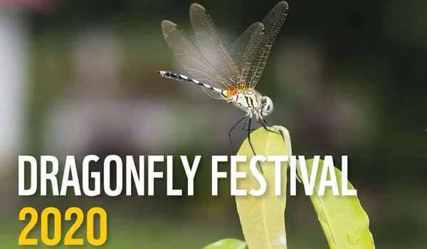 Thumbi Mahotsavam 2020 - Kerala will host 3rd National Dragonfly Festival