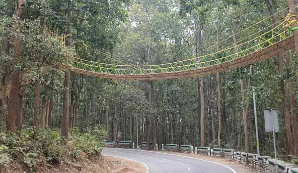 Uttarakhand developed Eco-bridge for Reptiles and Smaller Mammals